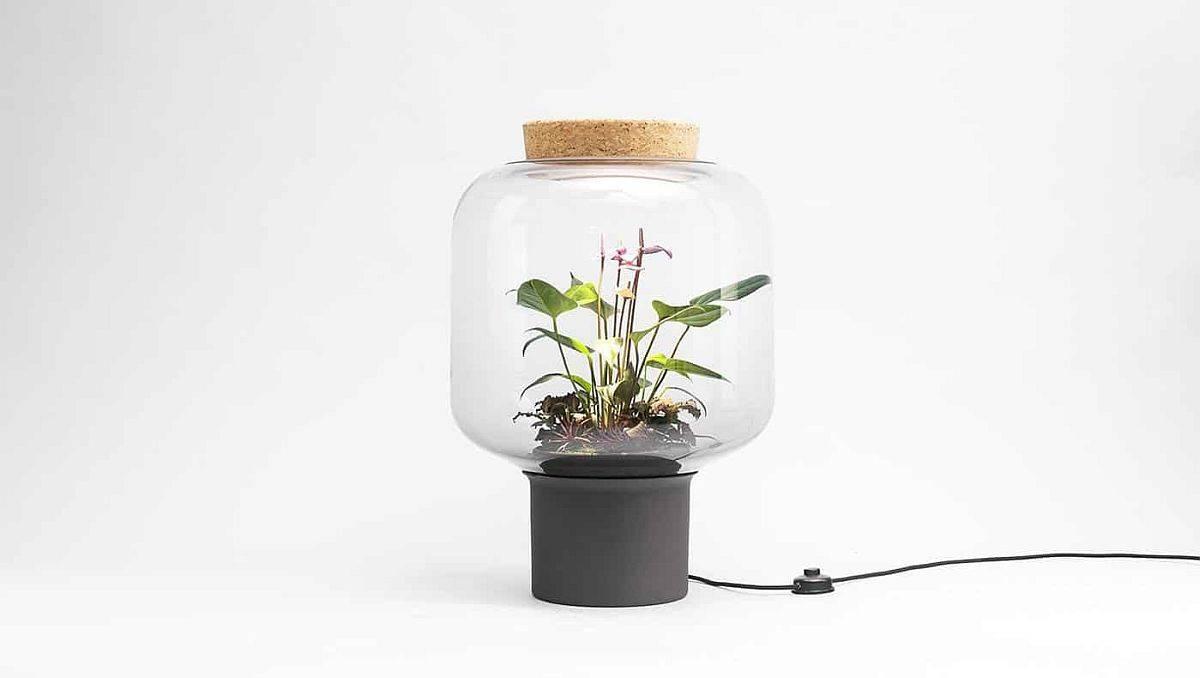 Unique-plant-lights-Mygdal-with-a-custom-hand-blown-design-51535