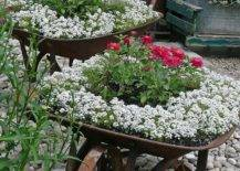 Wheelbarrow with pink and white flowers