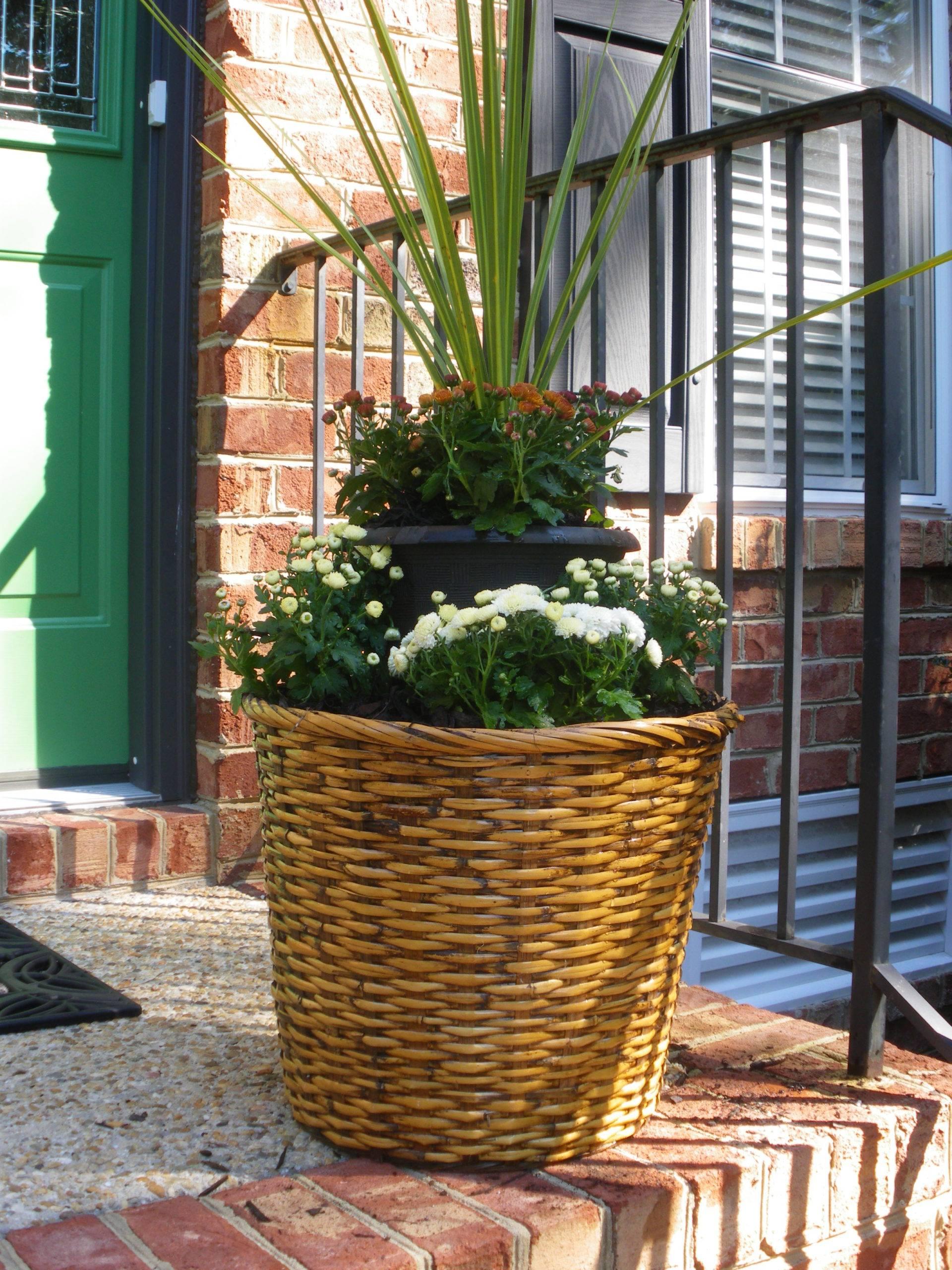 Wicker Basket Flower Pot