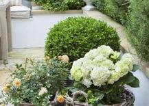 Wicker Basket Flower Pots