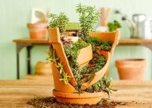 succulent garden built in broken pot
