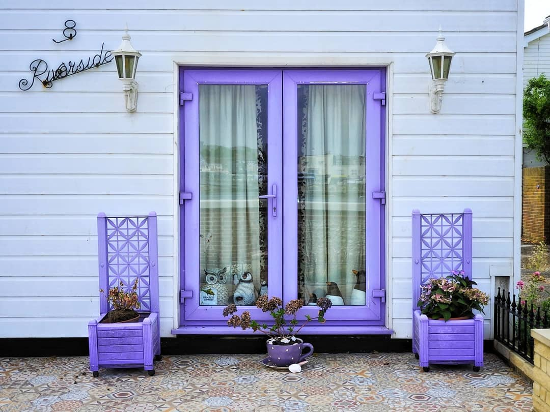 Purple window with purple planters