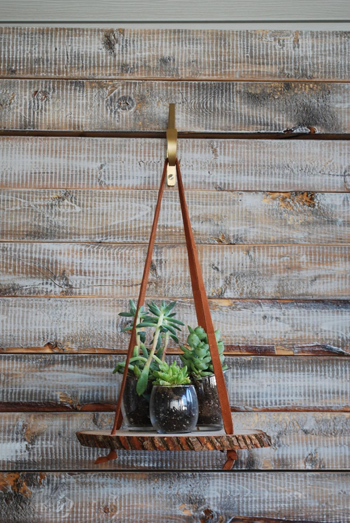 Three potted plants in glass hanging on wood slice