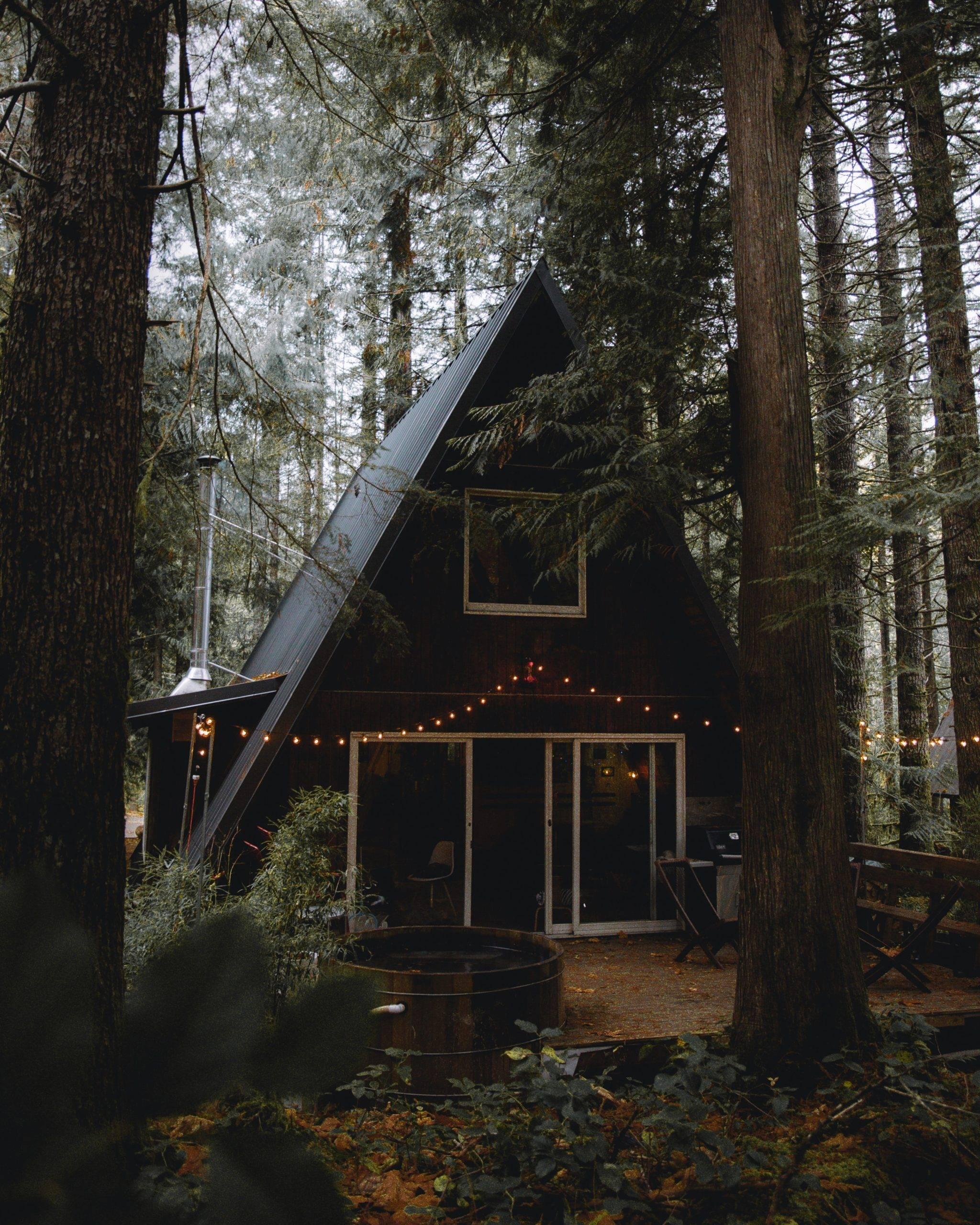 Black house hidden among tall trees