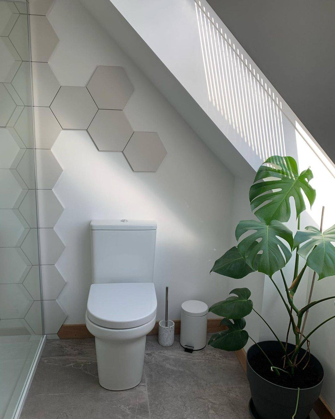 Large potted plant in bathroom