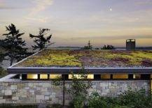 A-green-roof-is-the-perfect-way-to-insulate-the-roof-and-keep-your-home-cool-during-summers-82055-217x155