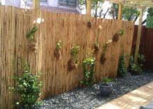 Bamboo Screen Backdrop