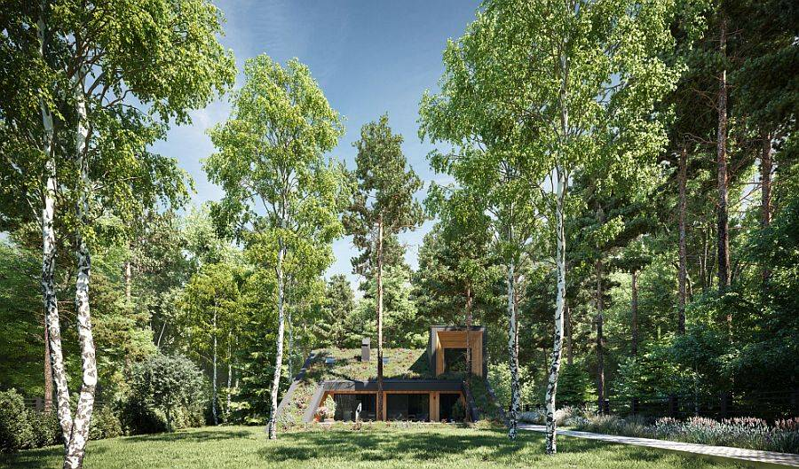 Live-roof-of-the-green-home-allows-it-to-blend-in-with-the-landscape-45471