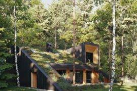 Green Wonder Home with a Live Roof: Energy-Efficient, Eco-Friendly Dwelling