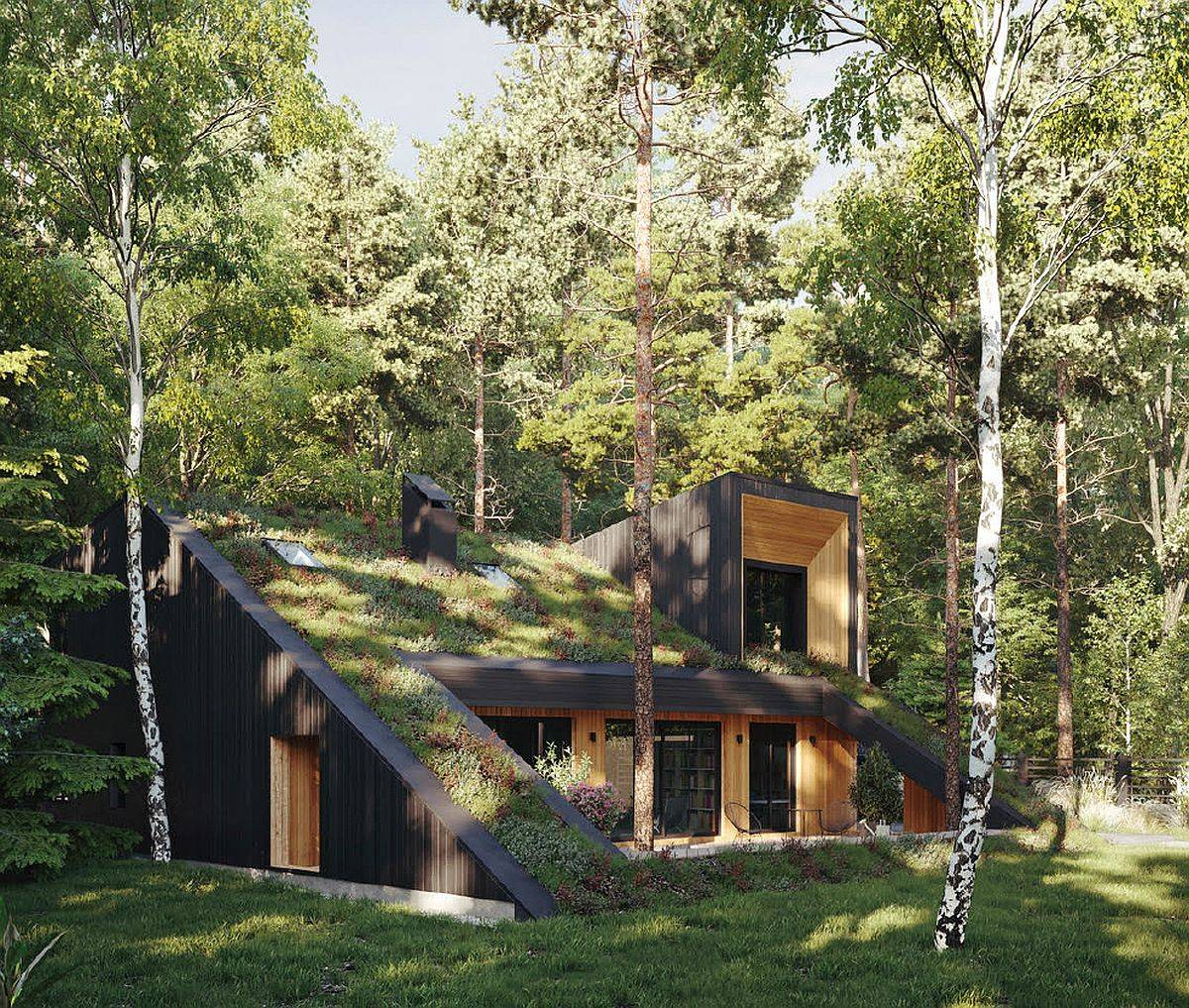 Modern, energy-efficient Hill House in Russia with a green roof that comes alive