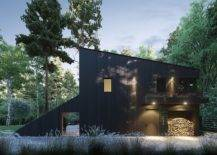 Section-of-the-house-completely-clad-in-dark-wood-makes-an-instant-impact-81203-217x155