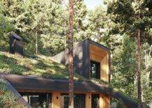 Small-outdoor-wooden-deck-of-the-green-home-with-a-fabulous-live-roof-33994-217x155