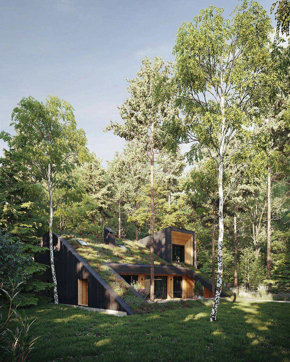 Tall trees around the green home add an additional layer of cover and improve passive heating and cooling