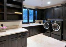 Sleek laundry room cabinets