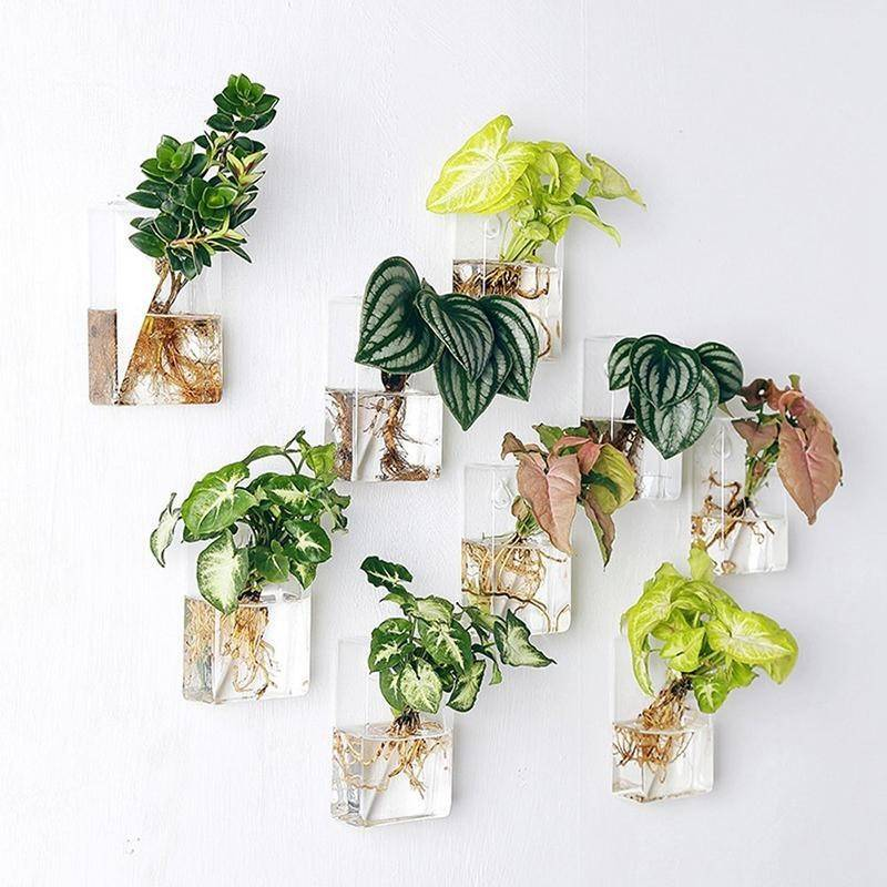 assortment of hanging glass planters