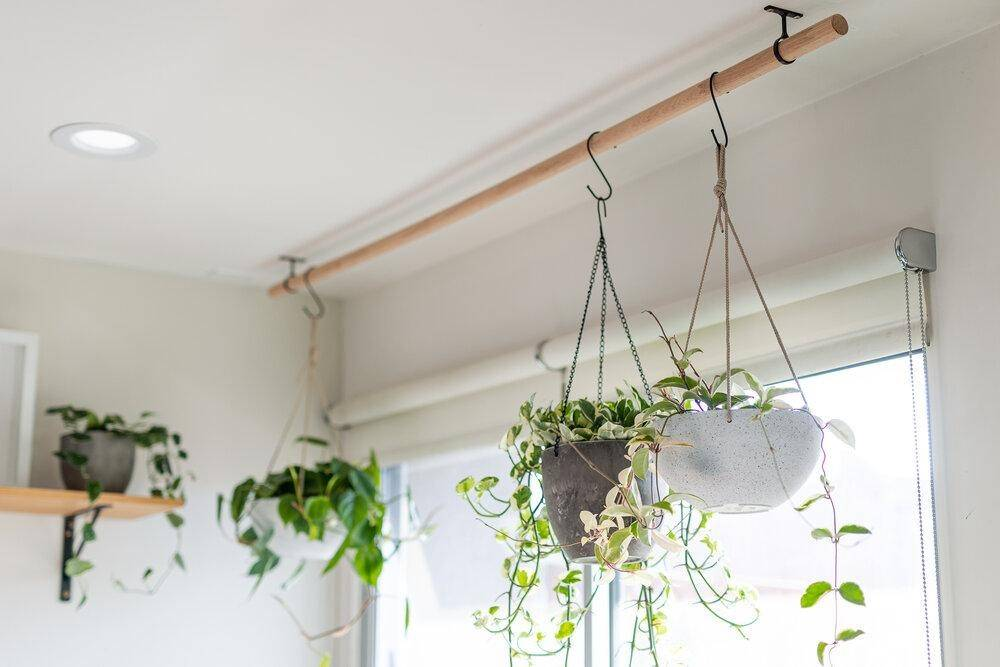 grey and black hanging planters
