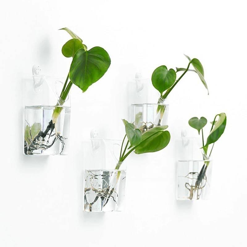 glass box wall planters