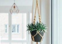planter-3-50587-217x155