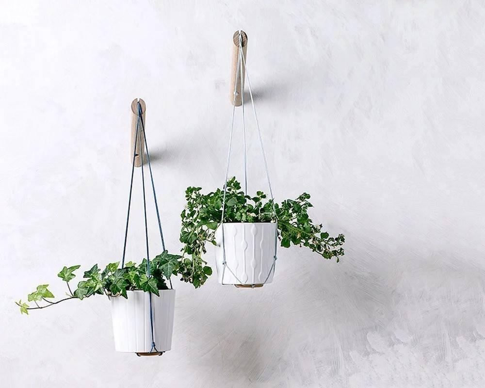 white macrame hanging planter