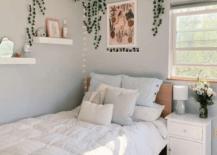 Dorm Room Decor Essentials