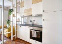 Dashing-and-space-savvy-cabinets-for-the-tiny-modern-kitchen-99456-217x155