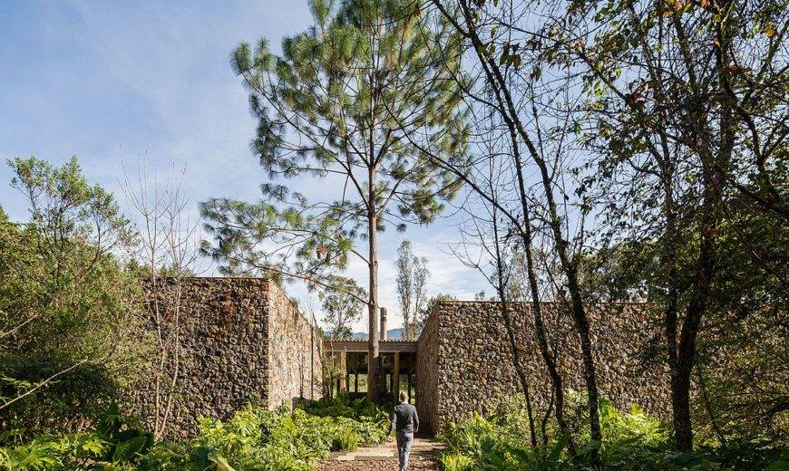 Greenery and Natural Finishes Define this Tranquil Home in Valle de Bravo