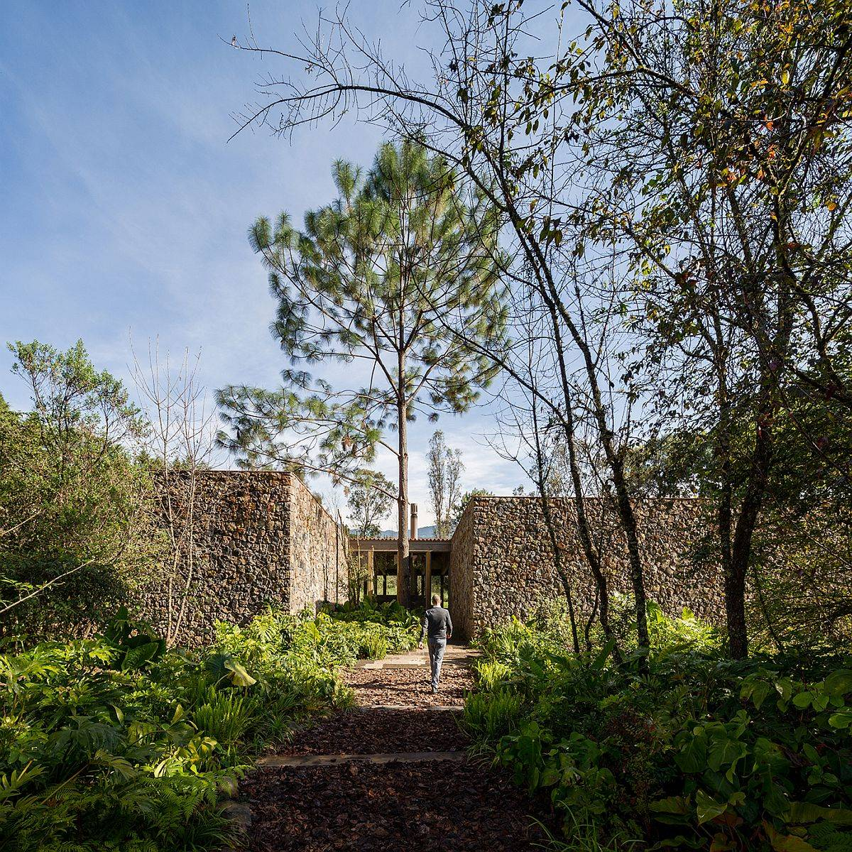 Lovely natural forest and stone wall-clad entryway leads to the lovely villa in Valle de Bravo