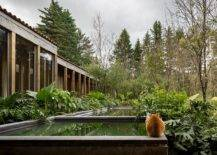 Reflective-pools-Jacuzzi-and-natural-forest-around-the-mexican-home-make-it-a-visual-treat-42166-217x155