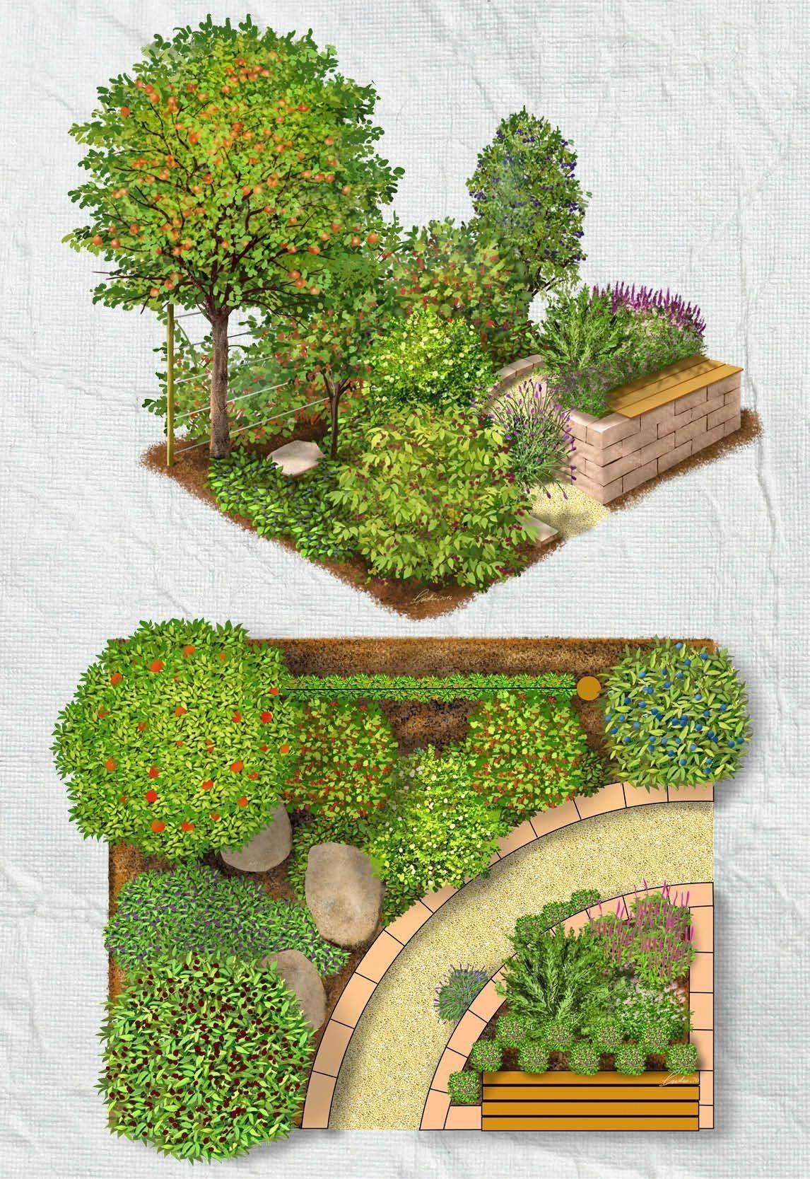 hardscaped backyard layout
