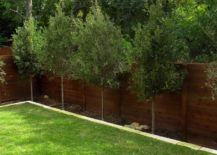 wooden fence in grassy backyard