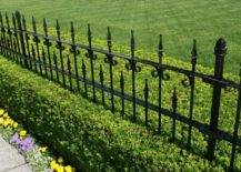 wrought iron fence with well trimmed hedges